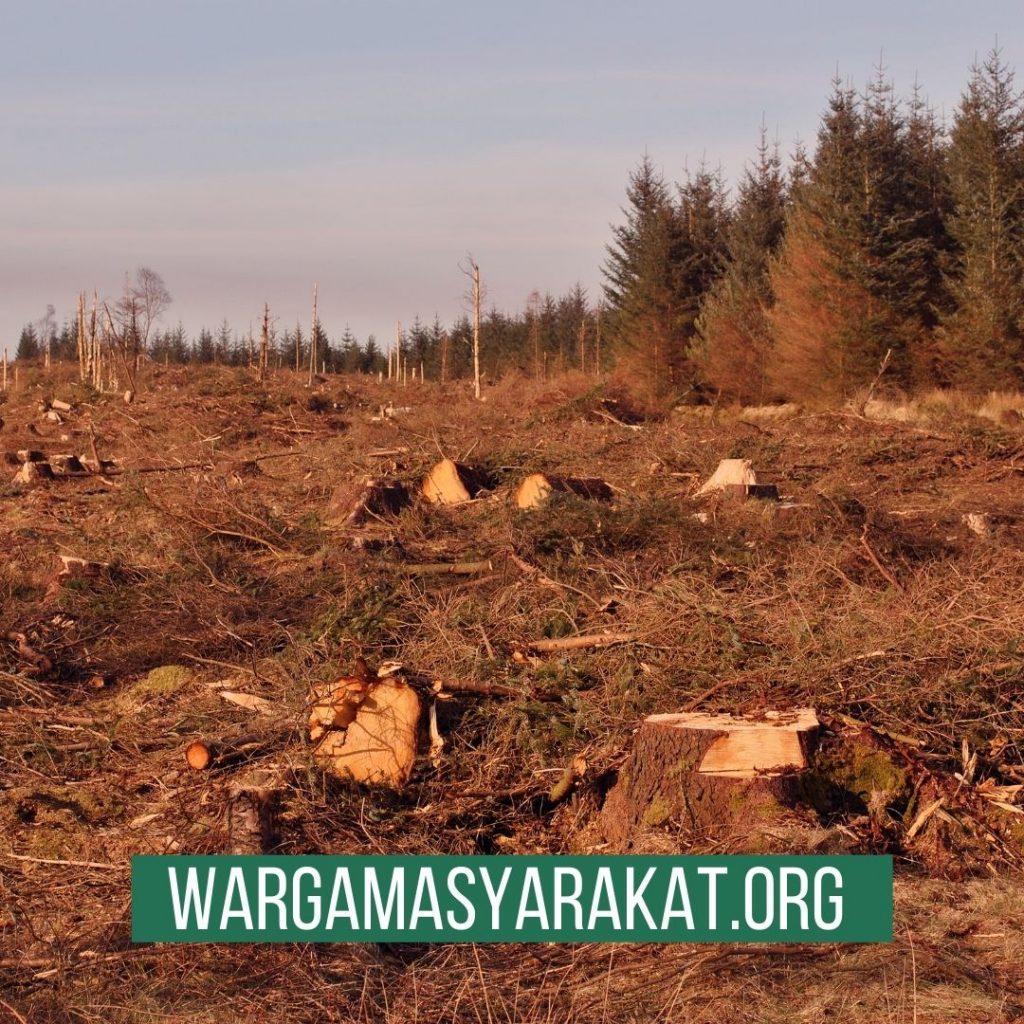 kerusakan lingkungan pada akhirnya akan menimbulkan bencana bagi manusia